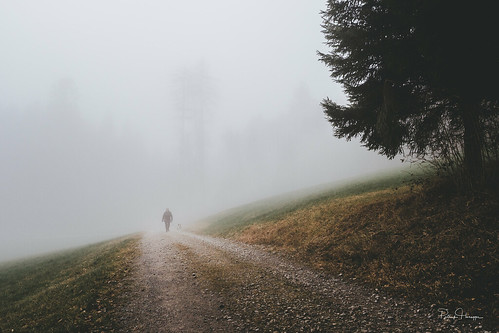 A Walk in the Fog | by patrick.honegger