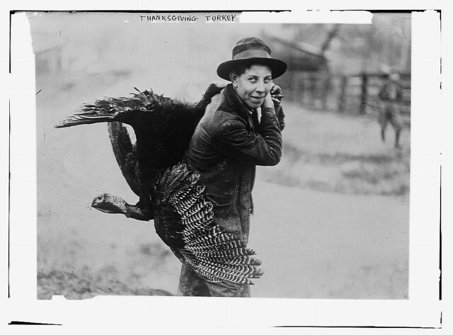 Thanksgiving turkey  (LOC)