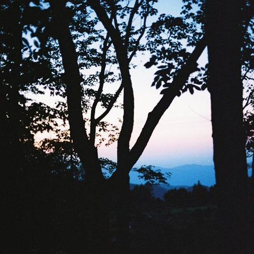 trees sunset appalachiantrail trail:name=appalachiantrail trail:mile=258