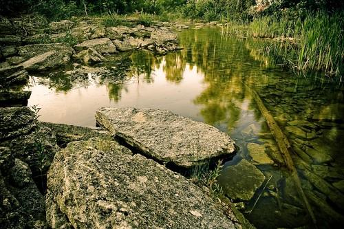 morning ontario canada detail reflection green water rock creek reeds landscape still rocks wideangle calm sharpened coboconk fourmilelake 4milelake