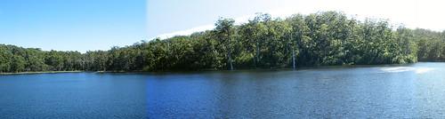 trip trees vacation lake holiday water forest wa westernaustralia karri lakebeedelup
