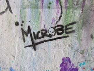 Microbe   by Laura Grace