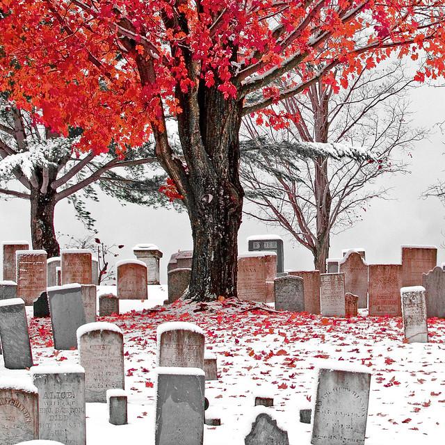 Cemetery in October Snow