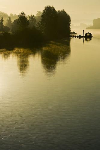 morning dawn still quiet britishcolumbia september fraserriver fortlangley morningmist bedfordchannel kvdl