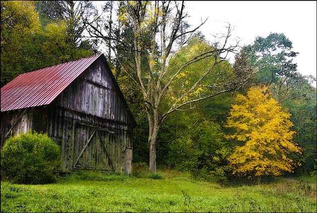 October Barn 2008