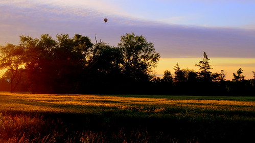 trees hot sunrise newjersey air balloon nj hotairballoon readington explored whitehousestation