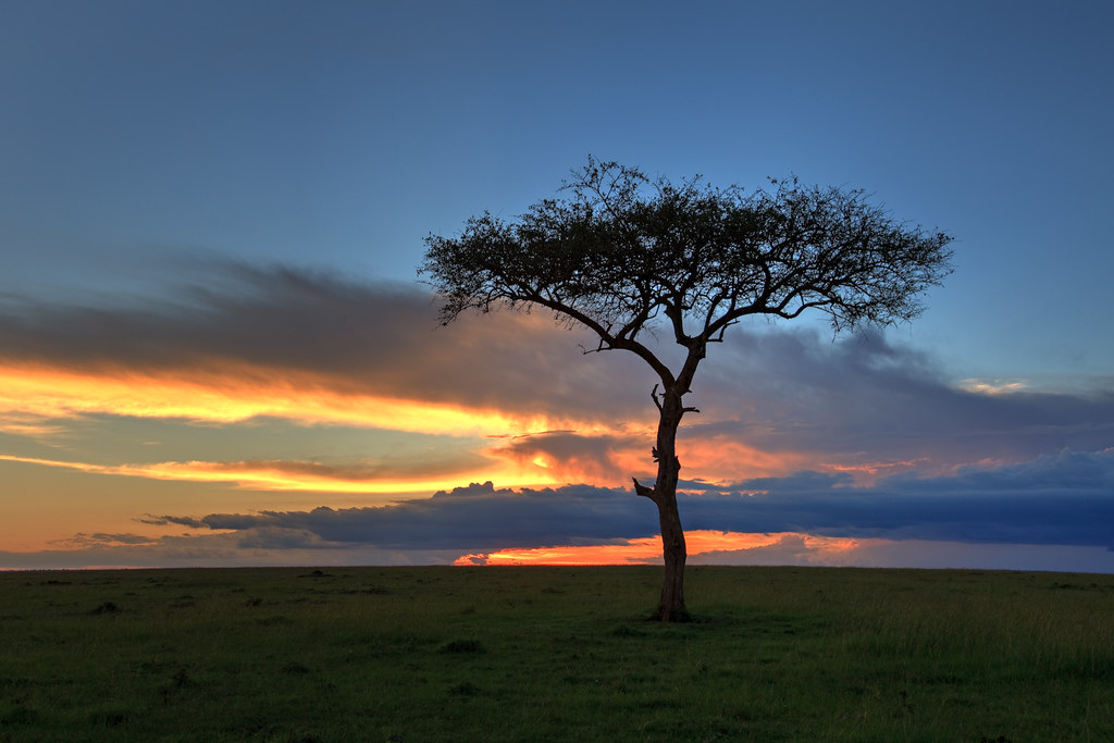Mara Sunset