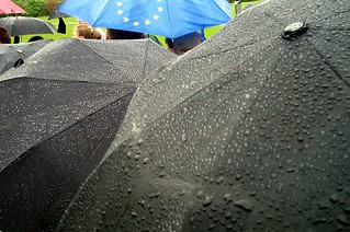 Swarovski Umbrellas