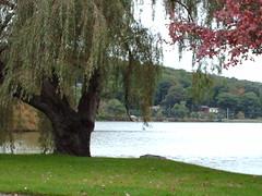 Lake Carmel - Carmel, NY