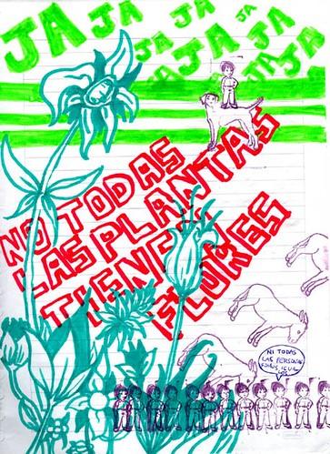 No todas las plantas tienen flores hay plantas que no for Todas las plantas son ornamentales
