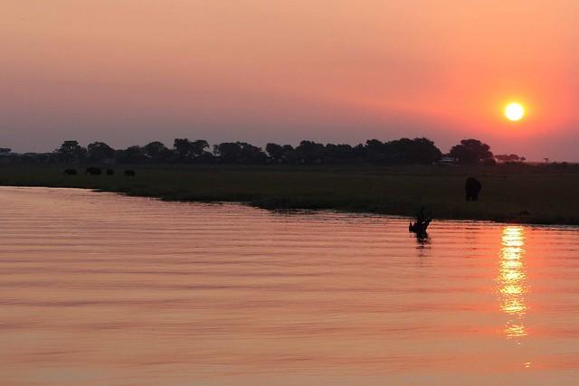 17_Tramonto sul fiume Chobe