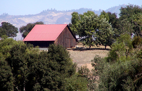 Los Olivos Barn