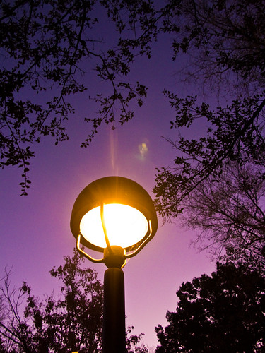 light arizona sky tree lamp sunrise purple az prescott picoftheday theworldseenfromthepowershotg9 prescottpubliclibrary