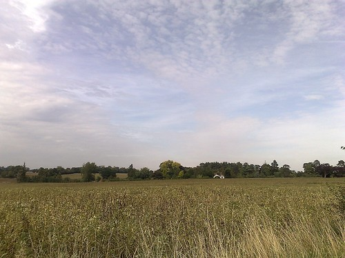 The fields and woods around Ware | by askpang
