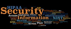 Information Security Wordle: NIST HIPAA Security Guide (Draft) | by purpleslog
