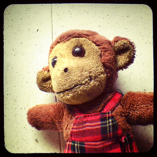 monkey_TtV