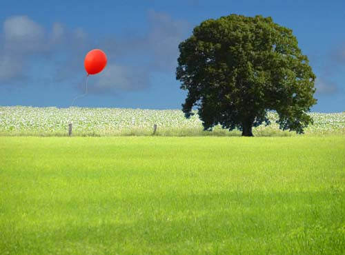 Wiese und Ballon | by static_view