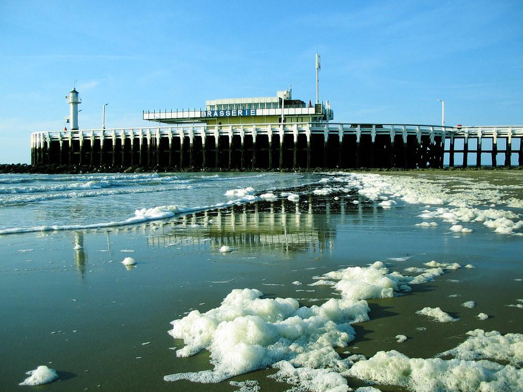 Contaminación en la playa 1