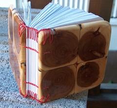 Endgrain applewood   by emmajanehw