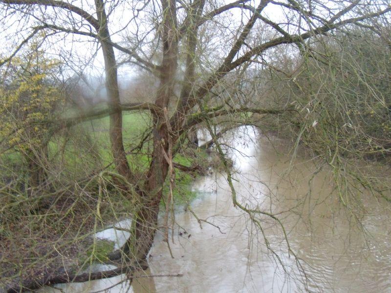 The River Mole Box Hill to Leatherhead