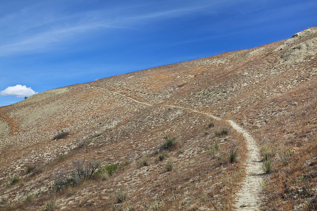 Trail to White Bluffs, Hanford Reach National Monument