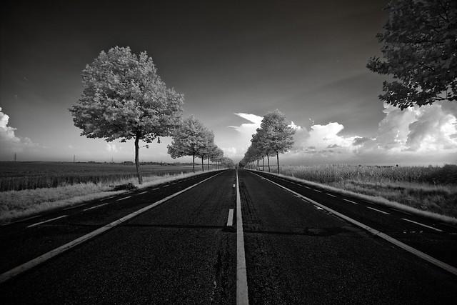 Roadful