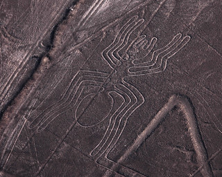 The Spider - Nazca Lines | by Monster.