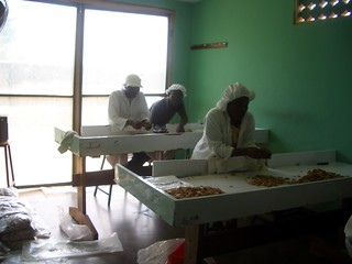 Kenya 055