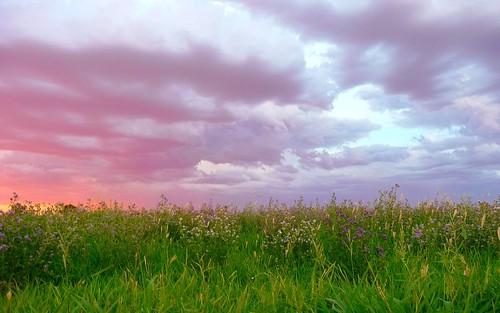 sunset arizona southwest clouds catchycolors lumix panasonic peoria rightplacerighttime tz4 throughyoureyestoours