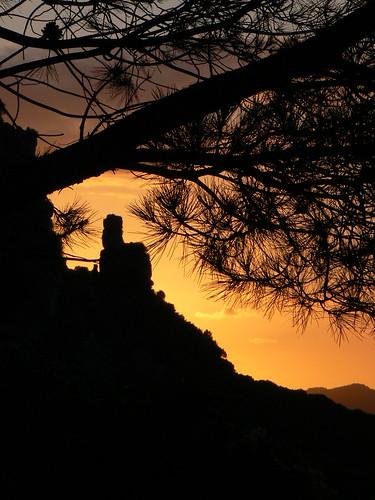 sunset mountain tree pine backlight landscape geotagged rocks sardinia ivan farwest ogliastra jerzu marcialis geo:lat=39768709 geo:lon=9510459 ivaneggio