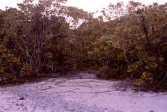 Marom, Ujelang Atoll