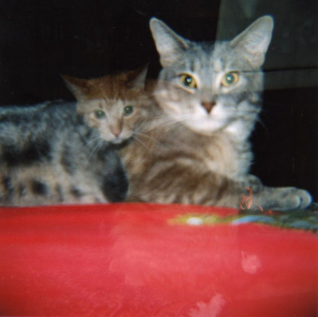Monty and Hanshaw