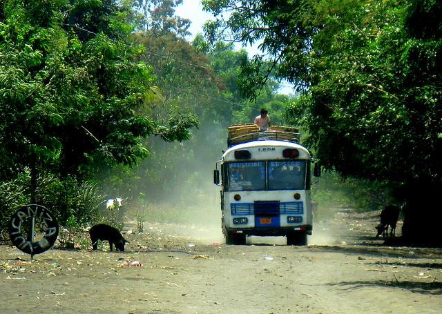 2008 - 03 - 24 - bus pig & cows - Leon Province