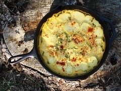 cast iron scalloped potatoes | by tofutti break