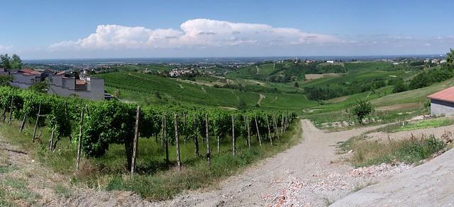 vista panoramica da Montù Beccaria (PV).