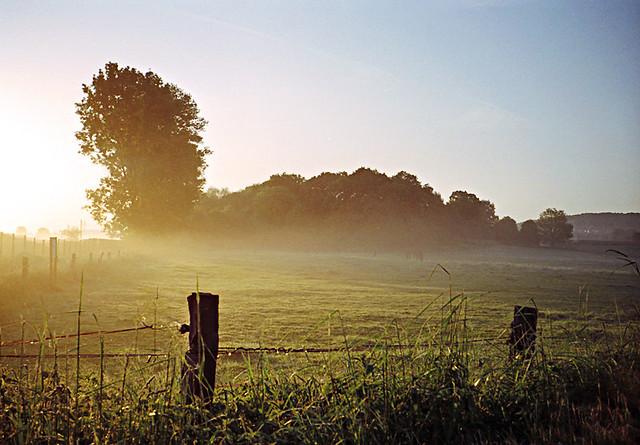 Foggy sunrise (Part II)