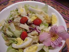 Cardboard Salad