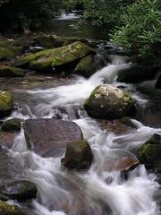 Twentymile Creek | by melmel80