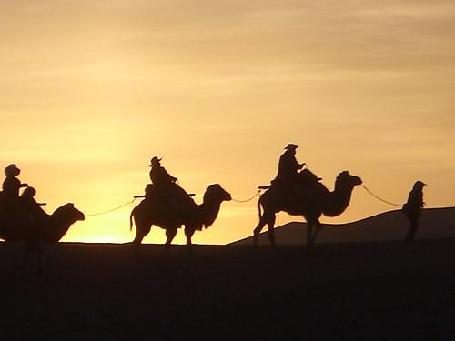 Sunrise by camel
