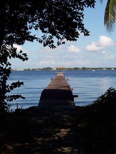 thomas edison henry ford winter estate dock banyan fort myers florida caloosahatchee river