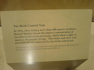 Birth control yam??? | by irrational_cat