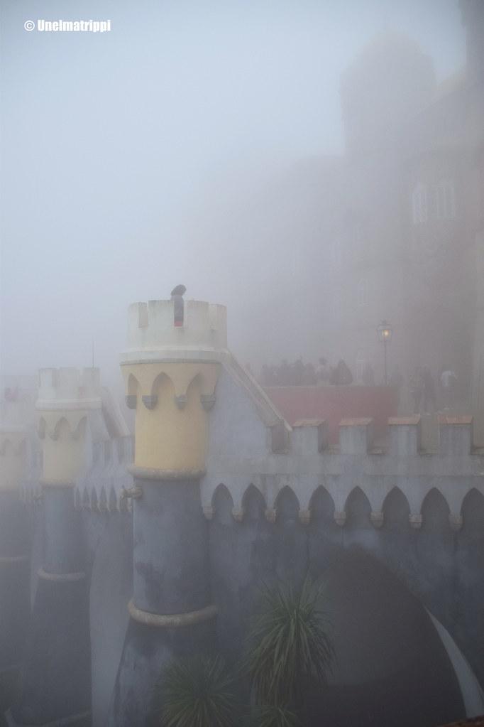 Sintran Penan palatsi hernerokkasumun peitossa