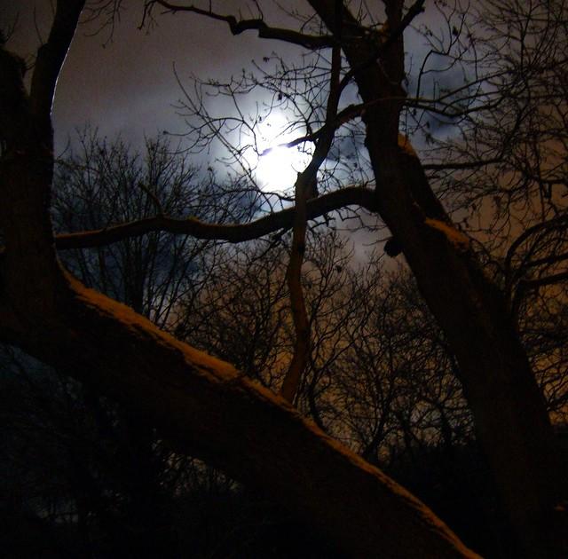 Gift Moon (teach yourself runes part 4)