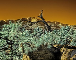 Infrared HDR Palmer Park Colorado Springs | by Brokentaco