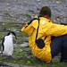 Antarctica Day 4