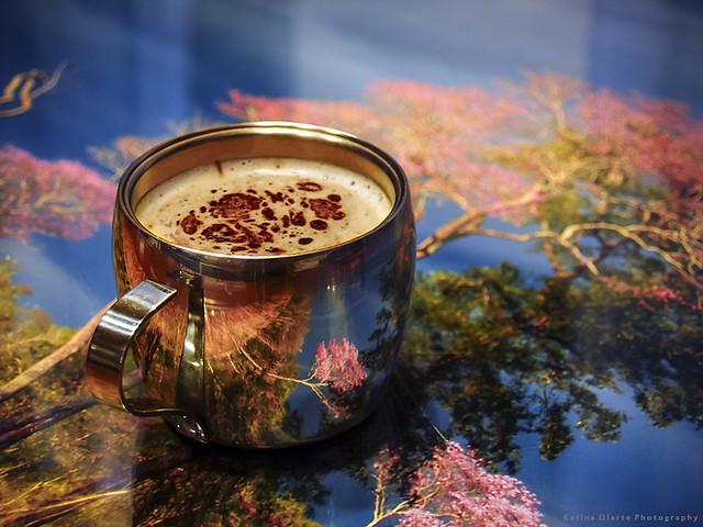 cafe y lapacho