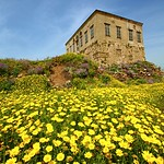 House on the Hill - Byblos, Lebanon