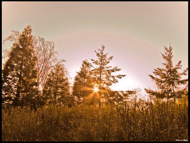 Sunset Nilke
