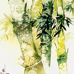 Bamboo forest 竹 林 深 处0155 Watercolor