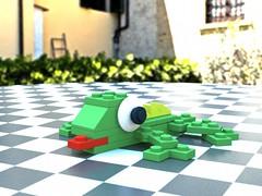 7804 Lizard | by SafePit
